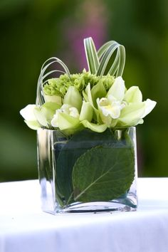 Modern tropical wedding flowers, cute for the table. Modern tropical wedding flowers, cute for the table. Modern Floral Arrangements, Small Flower Arrangements, Wedding Arrangements, Floral Centerpieces, Small Flowers, Fresh Flowers, Wedding Centerpieces, Beautiful Flowers, Table Arrangements