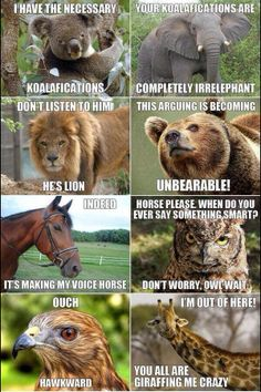 This makes me laugh every time.