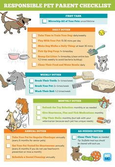 Pet Care Checklist for Responsible Pet ParentsYou can find Pet care and more on our website.Pet Care Checklist for Responsible Pet Parents Dog Health Tips, Dog Health Care, Cat Health, Puppy Care, Dog Care, Dog Pitbull, New Puppy Checklist, Dog Dental Care, Cat Care Tips