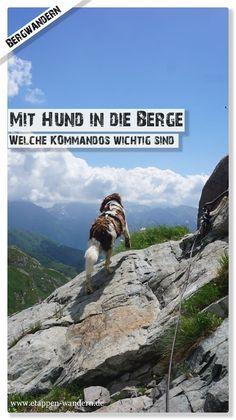 """Während ich im ersten Artikel meiner kleinen Serie """"Mit Hund in den Berge"""" auf die Ausrüstung eingegangen bin, will ich heute über die wichtigsten Kommandos beim Bergwandern schreiben. Wobei ich vorwegnehmen muss: Ich bin kein Hundetrainer. Letztendlich kann ich nur darüber berichten, wie Wanderhund Lotte und ich am Berg funktionieren. Jeder Hund ist so individuell wie wir auch und braucht ein ganz eigenes Konzept. Wanderlust, Mount Everest, Mountains, Nature, Travel, German, Hill Walking, Destinations, Viajes"""