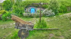 Hobbit House with living roof fits nicely into the landscape