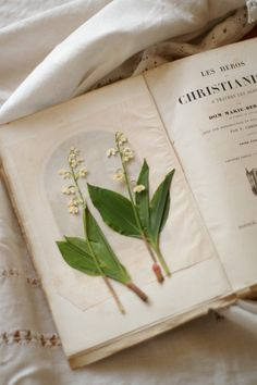 Convallaria majalis, lily of the valley find an antidote
