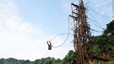 Braver than bungee: Vanuatu's land-diving daredevils