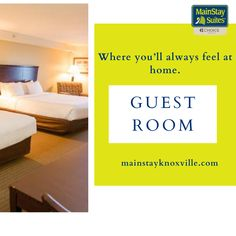 The fresh, light ambiance of our guest rooms will put you in vacation mode! or reservation Visit our website:- mainstayknoxville.com OR Contact:- +1 (865) 247-0222. #mainstay #hotel #motel #knoxville #suites #Tennessee #mainstay #explore #magicalcity #stay #contactusnow📲 #book #booknow‼️ #kitchendesign #amenities #welcome #followforfollowback Motel, The Fresh, Guest Room, Tennessee, Kitchen Design, Vacation, Cuisine Design, Vacations, Guest Rooms