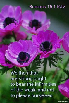 Romans .15:1.kjv We then that are strong ought to bear the infirmities of the weak, and not to please ourselves.