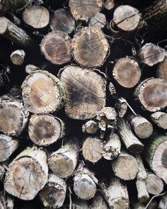 Warm days chilly nights...time I got some logs for the fire methinks. Hows your Autumn prepping going? x #slowautumndays #openuptoautumn #thisisfall #autumnlookslikethis #upandautumn #anatural_autumn #ccseasonal #aseasonalshift #embracingtheseasons #autumnmood