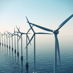 North American Windpower: Embryonic No More: U.S. Offshore Wind Industry Gaining Momentum - Cape Wind and Deepwater projects (both in the Northeast) are moving forward and construction for both projects is planned to begin next year.