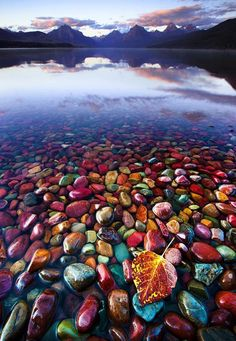 Pebble Shore Lake in Glacier National Park, Montana #travel