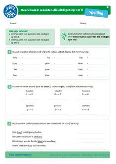Meervouden: woorden die eindigen op -t of -d [1]