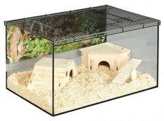 Das Mäuse- und Hambsternagarium Kerry sorgt für freie Sicht auf Ihre Tiere. Außerdem sorgt dieses Nagarium für einen echten Blickfang in jedem Zimmer.