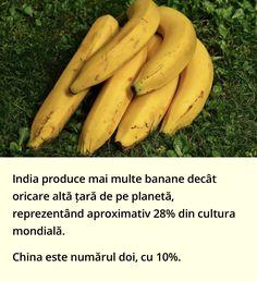 Guinness, Tropical, Banana