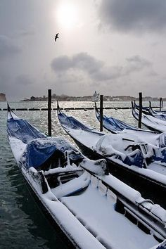 First sun after snow in Venice by Pierpaolo., via Flickr