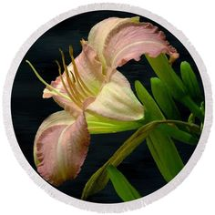 "Add some glamour to your beach life with this round beach towel, featuring this beautifully exotic lily. ""Resplendent"" ~ © 2016 RC deWinter"