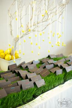 Tree, jewels to indicate food choice, grass, gray escort cards table. Manzanita Centerpiece, Lemon Centerpieces, Manzanita Tree, Outdoor Wedding Decorations, Reception Decorations, Wedding Themes, Kylie Baby Shower, Seating Plan Wedding, Yellow Wedding