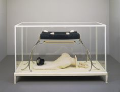 MoMA | The Collection | Matthew Barney. The Cabinet of Baby Fay La Foe. 2000