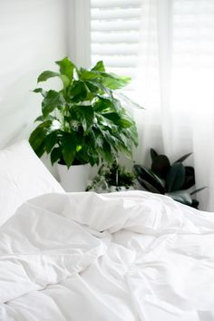 Organic Quilt & Duvet Covers. Pure white cotton linen and luxury bedding. Elkie & Ark