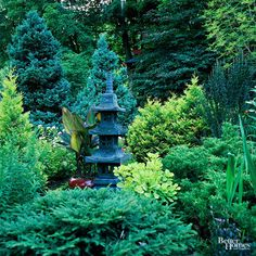 Most Japanese gardens rely on subtle differences in color and texture. Here conifers provide soothing shades of green for year-round interest. Some echo the pyramidal form of the pagoda while others frame the feature with their low, spreading branches./
