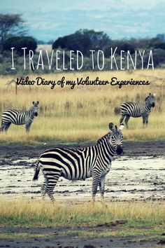Kenya Video Diary: My Travel and Volunteer Experiences at Soysambu Conservancy