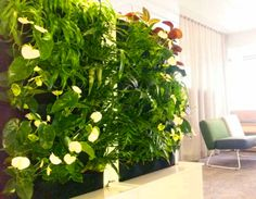 Zengrow Finland gives office workers fresh air and a soothing environment using Florafelt.