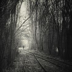 from darkness into light Art Print