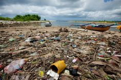 News - New UN report finds marine debris harming more than 800 species, costing countries millions trash articlesUN News - New UN report finds marine debris harming more than 800 species, costing countries millions trash articles People Around The World, Around The Worlds, Marine Debris, Environmental Issues, Sustainable Development, Amphibians, Reptiles, Beach Photos, Southeast Asia
