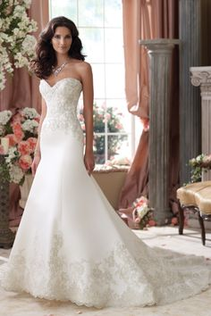 Wedding Dress ~ Photo by David Tutera for Mon Cheri