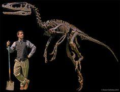 Meet Dakotaraptor: the feathered dinosaur that was 'utterly lethal'