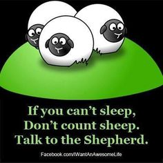 What type of Shepherd are you?