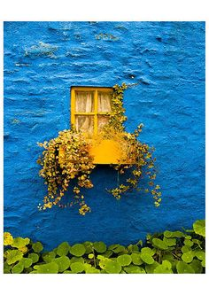 ♥ Gorgeous in every way...looks like the window is floating in an ocean!