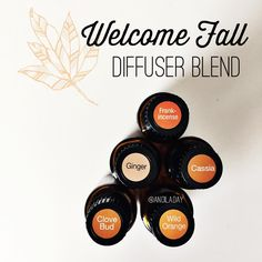 It's been stormy here and the temperatures have dropped. I put this blend in my diffuser and immediately settled into Fall. It smells like spiced apple cider. 3 drops Wild Orange 1 drop Ginger 1 drop Clove 1 drop Cinnamon or Cassia 2 drops Frankincense I love that not only does it smell amazing, it cleanses the air at the same time! Seasonal sicknesses got you (or your family) down?