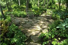 want to do down by the creek! stone patio in the woods