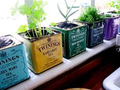 These quaint little metal Twinings vintage tea tins have been reused as small herb pots. They make a cute set of windowsill planters. To avoid rust damage, sit metal tins on a tray to catch water from the drainage holes.