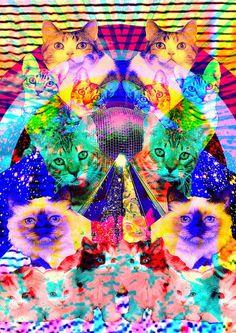 Eff yeah psychedelic cat art