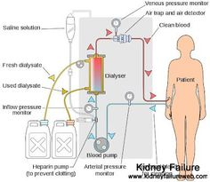 Can Kidney Function Be Reversed When You Are On Dialysis