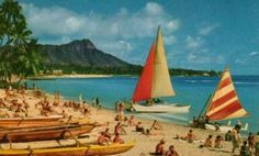 Hawaii Vintage Postcard