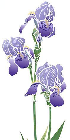 Iris Stencil