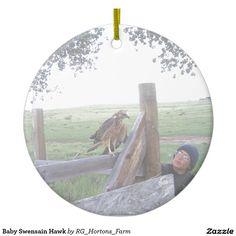 Baby Swensain Hawk Ceramic Ornament