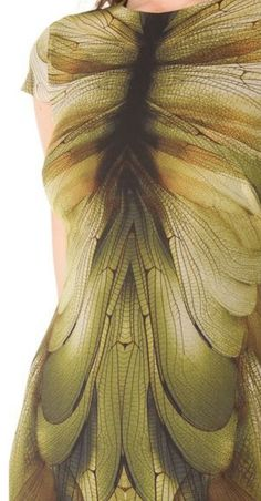 Dragonfly Wing Dress. Alexander McQueen