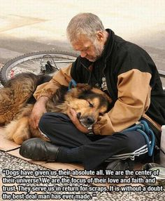 quotes about dogs  OUR BEST FRIENDS