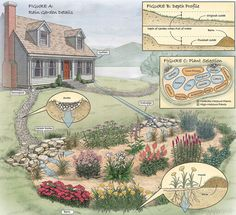 Rain Garden Construction | in developed areas the natural depressions are filled in the surface ...