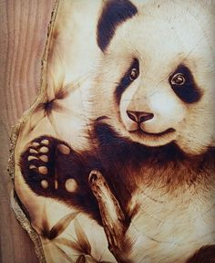 panda  70% pyrography art by me