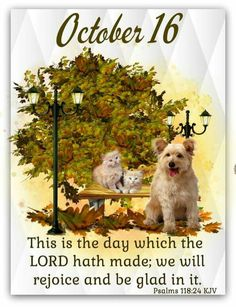 Daily Scripture, Scripture Verses, Bible Verses Quotes, Scriptures, October Calender, Calendar, Birth Month Meanings, Hello October, October 10