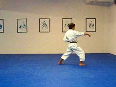 Taikyoku Shodan Shotokan Karate Kata-Youtube- Karl-Hans Konig