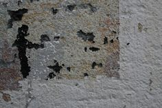 Abstract photo, grunge wall by Branka Nadj