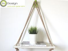 Shelf, book and a plant in Interior Design Studio.