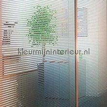 Deze raamfolie is ook geschikt voor vochtige ruimtes zoals douche\'s ...