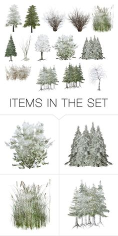 """Winter Trees For You"" by sjlew ❤ liked on Polyvore featuring art"