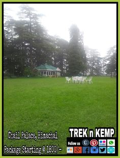 Chail a beautiful and less crowded place in Himachal.  #chailPalace #kaliKaTibba #highestCricketGround #unexplored #trekkingPoints #adventure   Our Packages : Jungle Camping Starting @ 1800/- INR  Hotel Stay Starting @ 1500/- INR