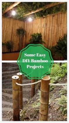Best DIY Bamboo Design Ideas #diybambooideas Bamboo Crafts, Bamboo Design, Bamboo Ideas, Diy And Crafts, Easy Diy, Diy Projects, The Incredibles, Design Ideas, Amazing
