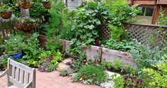 small space kitchen garden